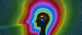 应用神经科学的九大发现(二)
