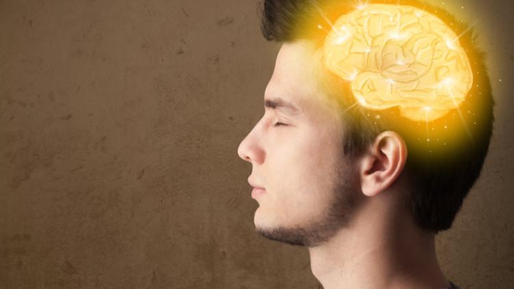应用神经科学的九大发现(三)