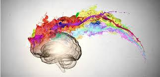 应用神经科学的九大发现(一)