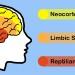 应用神经科学101